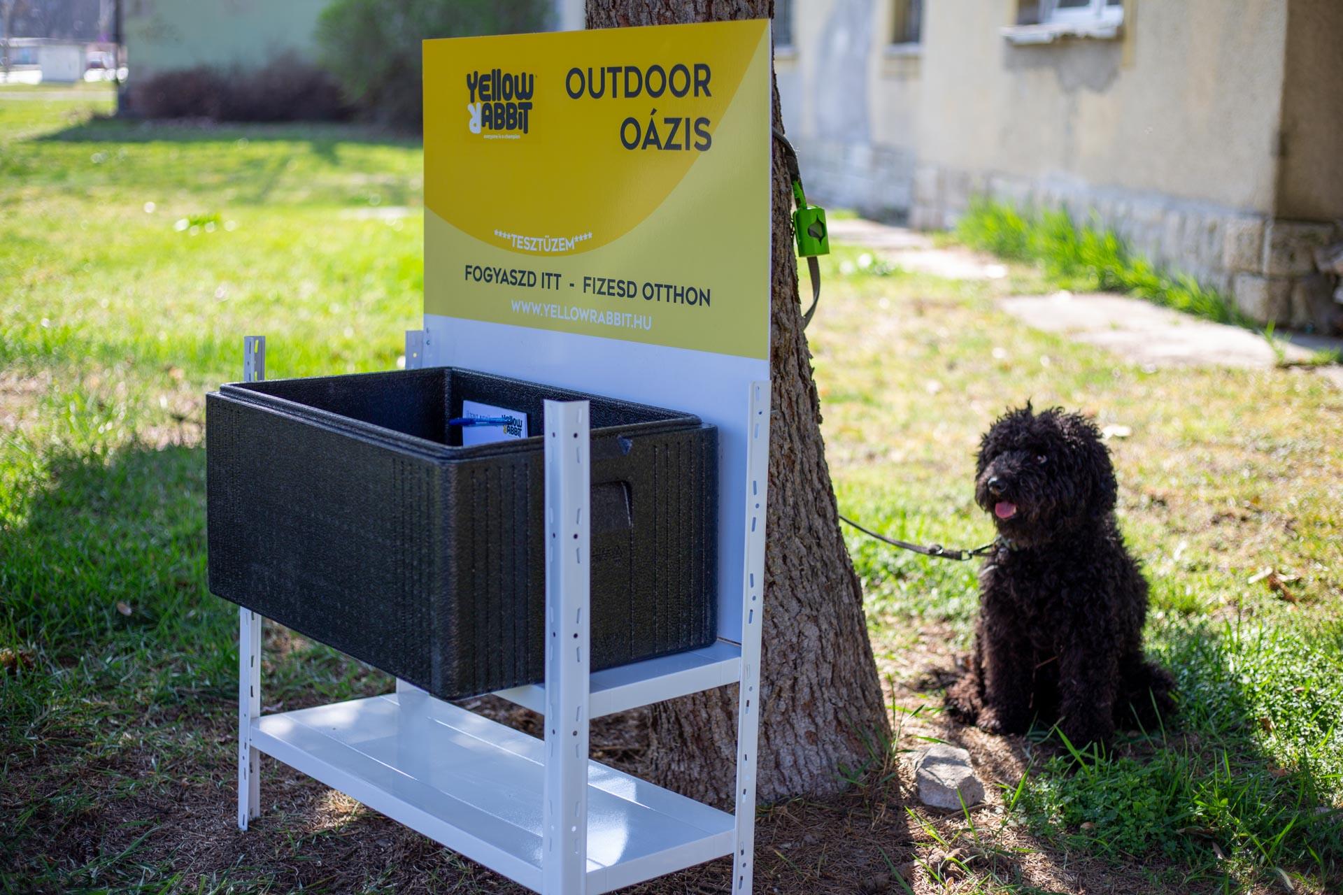 Yellow Rabbit Outdoor Oázis - Frissítőpont