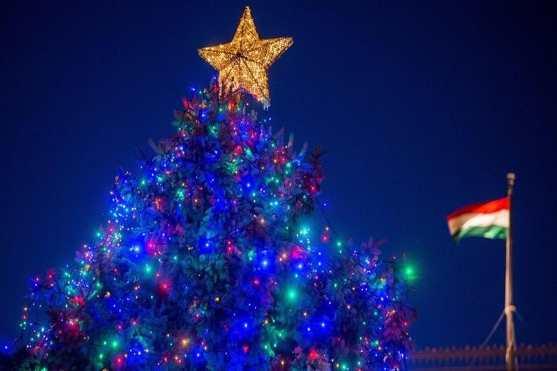 https://kolorline.hu/Putnokról érkezik az Ország Karácsonyfája