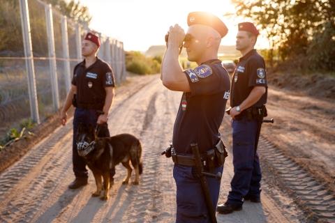 https://kolorline.hu/Határvadászokat keresnek Putnokon