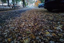 https://kolorline.hu/Kicsit ködös, kicsit csúszós – Balesetmegelőzés ősszel