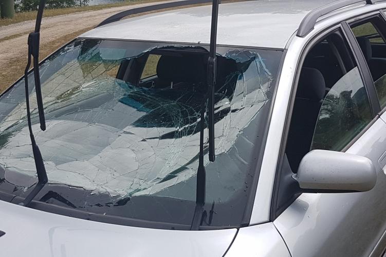 http://kolorline.hu/Életet mentettek a szabadnapos rendőrök