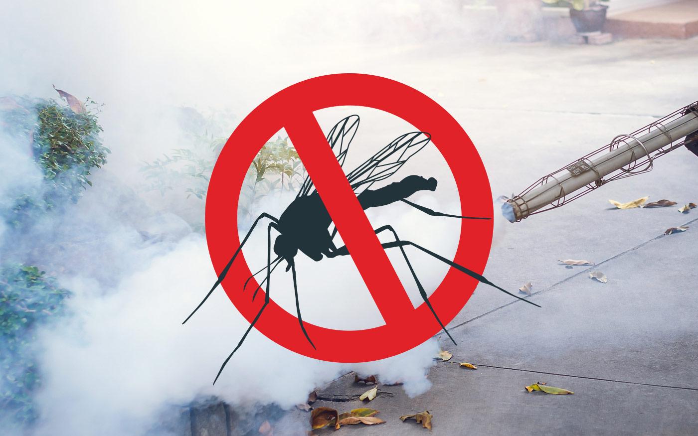 https://kolorline.hu/Lakossági tájékoztató szúnyoggyérítésről